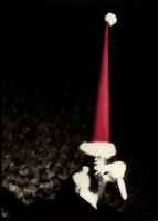 http://www.markhigashino.com/files/gimgs/th-6_6_050-xmas-card-w-red-hat.jpg